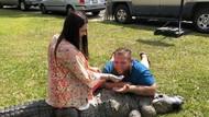 Penampakan Aligator yang Riuhkan Pesta Pasangan di AS