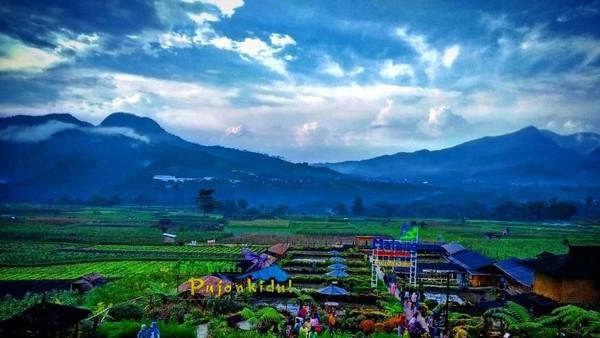 Desa Wisata Pujon Kidul menyuguhkan udara yang sejuk. Destinasi ini dikelilingi oleh perbukitan.(cafesawah_pujonkidul/Instagram)