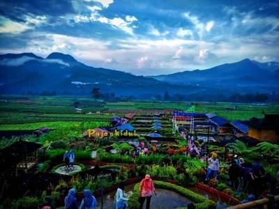 Jelajahi Alam Sambil Main Outbond Seru di Desa Wisata Pujon Kidul