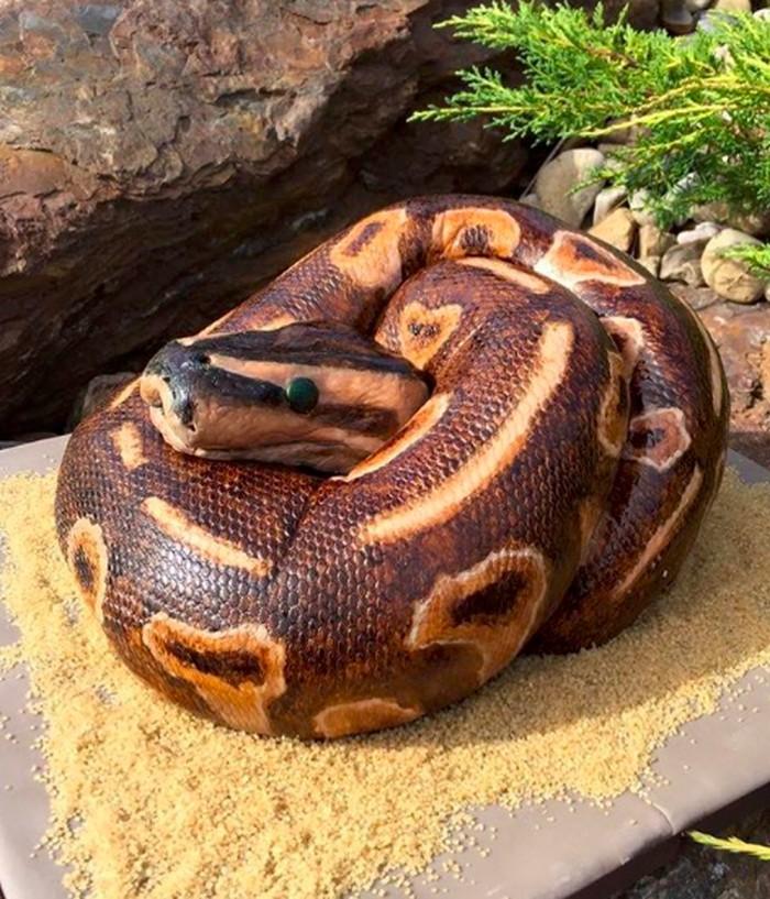 """Tak ada yang menyangka kalau ini bukan ular sungguhan! Bentuk kepala dan motif kulit pada cake persis ular. """"Keluarga tidak suka saat saya menerima pesanan seperti ini,"""" tulis designercakes605. Foto: Instagram designercakes605"""