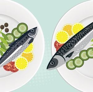 RI Juga Impor Tepung Ikan, untuk Apa?