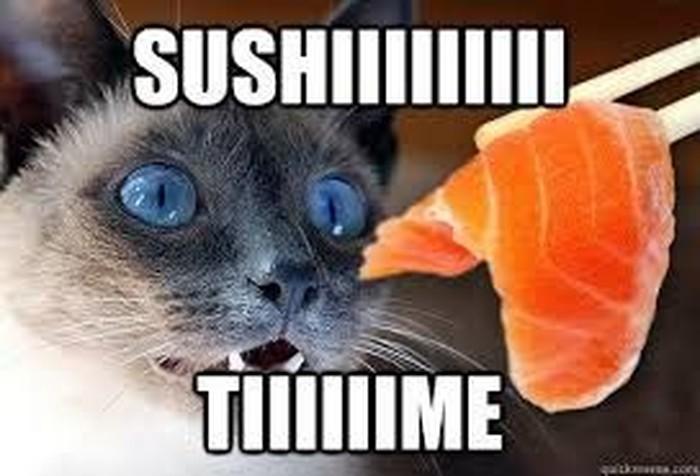 Kamu pasti kaya gini yaaa kalau sudah disodorkan dengan sushi kesukaan. Lihat saja ekspresi wajah seekor kucing yang terbelalak ketika melihat potongan salmon. Ia pun berkata, Sushiiii Tiiiime.Foto: Istimewa