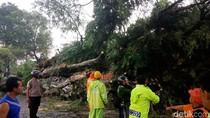 Hujan Disertai Angin di Blitar: 1 Orang Tewas, 40 Rumah Rusak