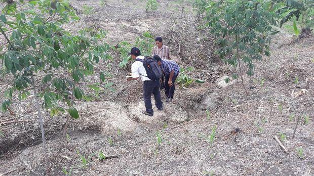 Arkeolog Sangiran Ikut Teliti Lokasi Temuan Fosil di Ngawi