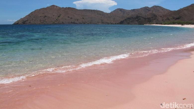 Pantai Pink di Pulau Komodo, Labuan Bajo (Afif Farhan/detikTravel)
