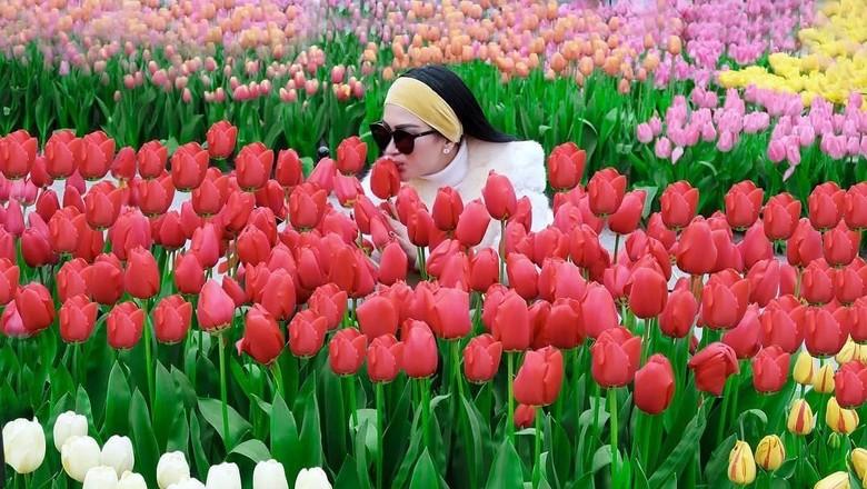Syahrini yang terlihat riang di kebun bunga tulip Keukenhof (princessyahrini/Instagram)