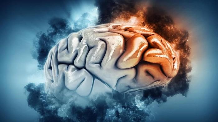 Sebagian isi kepalanya bukan jaringan otak melainkan hanya cairan. (Foto: Thinkstock)