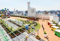 Penuh Kenangan, Ini Bianglala Rooftop Terakhir di Tokyo