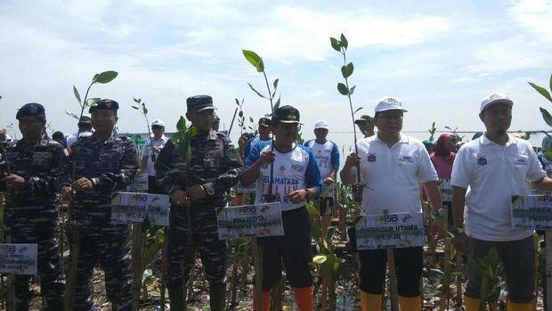 Komunitas menanam mangrove