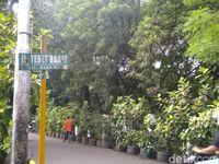 Lokasi parkir mobil Ratna Sarumpaet sebelum diderek petugas Dishub DKI.
