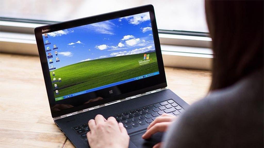Tua-tua Keladi Windows XP