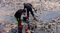 Teluk Balikpapan Tercemar, ESDM: Kita Lihat Siapa yang Salah