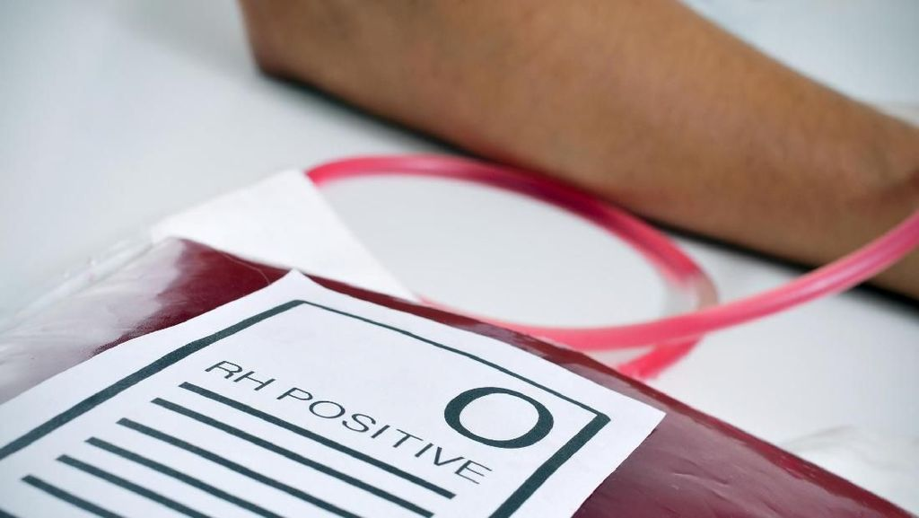 Pola Makan dan Menu Sarapan Sehat untuk Pemilik Golongan Darah O
