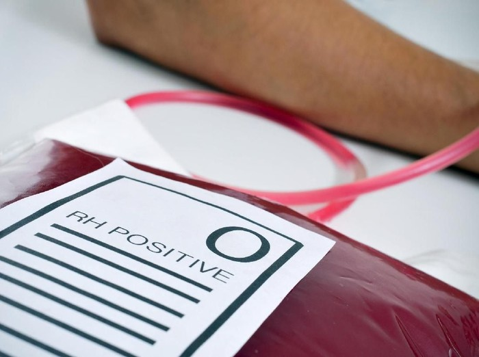 Golongan Darah, Kenali Jenis hingga Karakteristiknya  /Foto: ilustrasi/thinkstock
