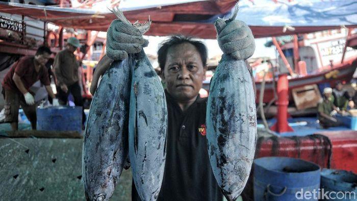 Aktivitas Nelayan di Pelabuhan Ikan Muara Baru Foto: Pradita Utama