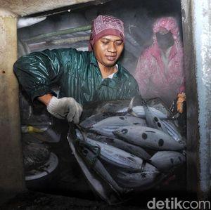 Cerita RI Berhasil Kurangi Impor dengan Ikan Lokal