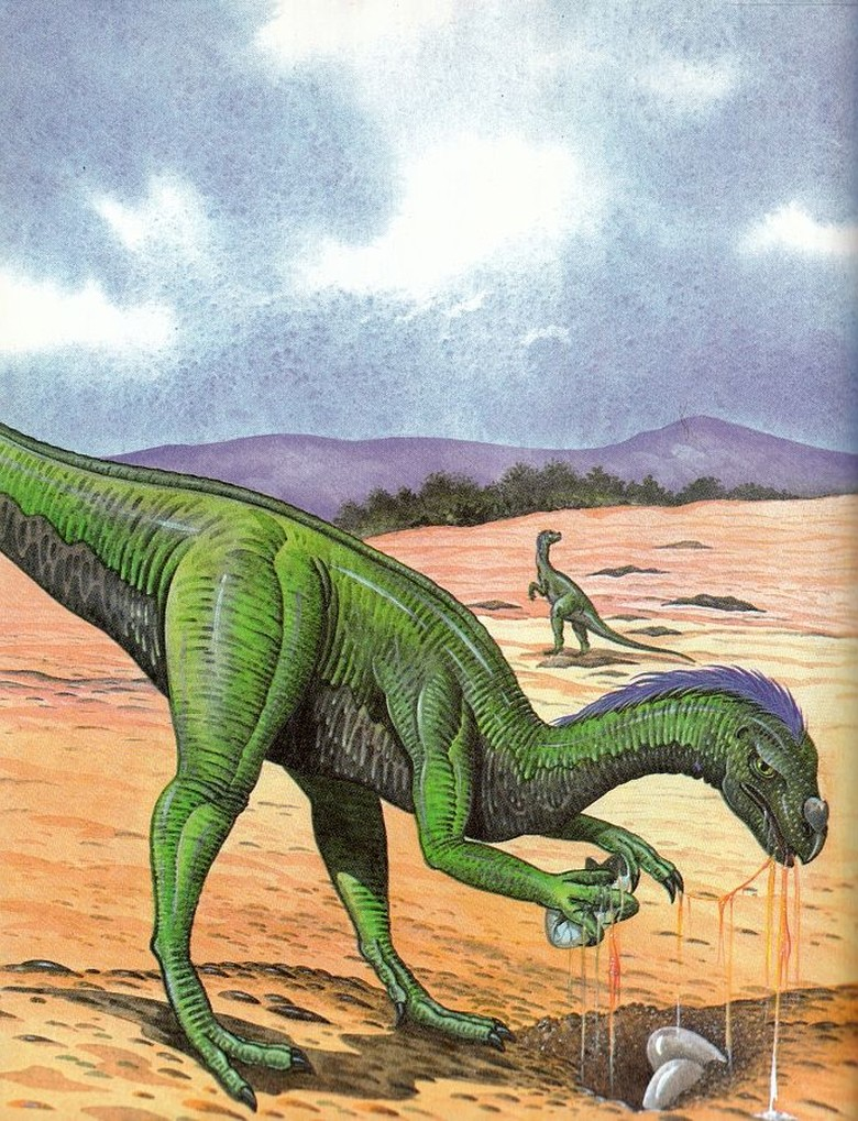Paleontolog bernama George Wielang pada 1925 sempat mengatakan bahwa dinosaurus punah karena terlalu banyak memakan telur dari spesies itu sendiri, walau kemudian dibantah oleh peneliti dari Yale University yang mengatakan kebiasaan tersebut tidak cukup masif untuk menyebabkan kepunahan. Foto: chasmosaurs.blogspot.com