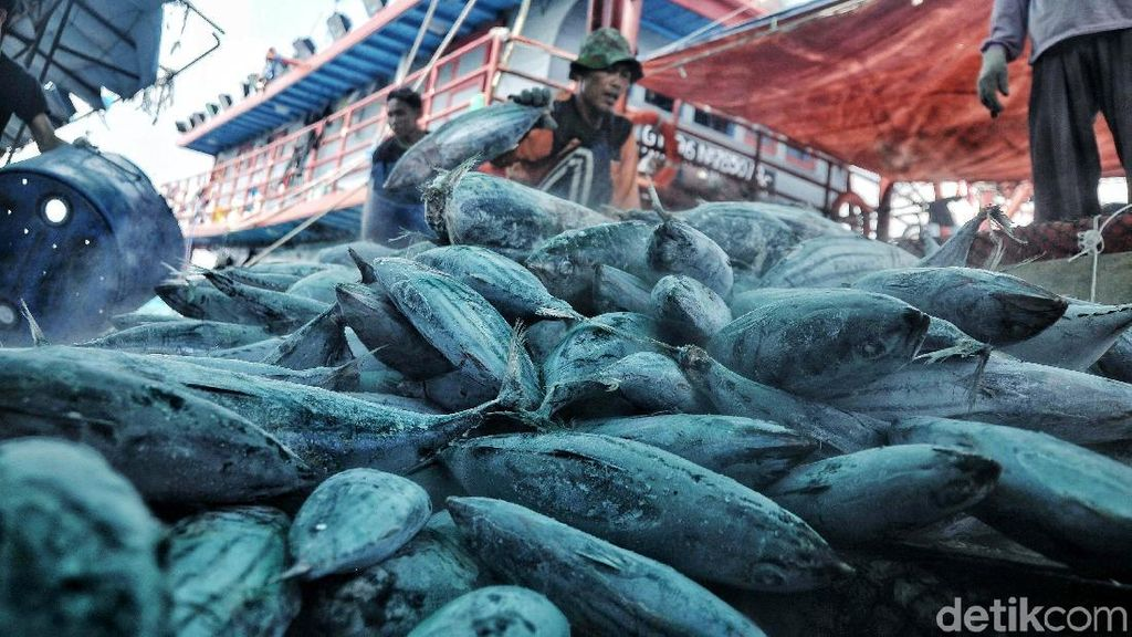 Sektor Perikanan Ikut Kena Imbas Kenaikan Tarif Kargo