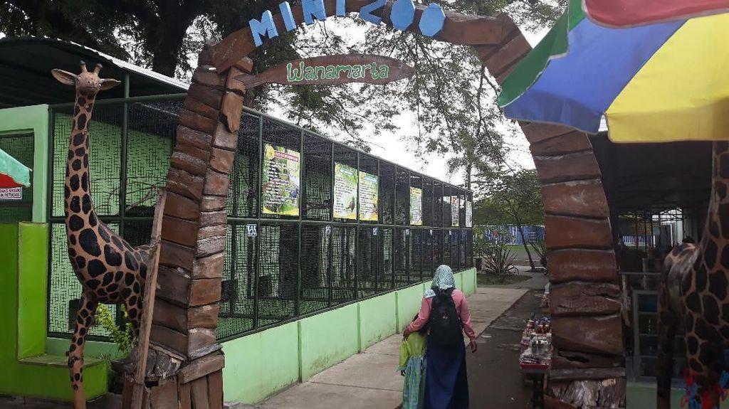 Ada Mini Zoo di Madiun Umbul Square, Apa Saja Koleksinya?