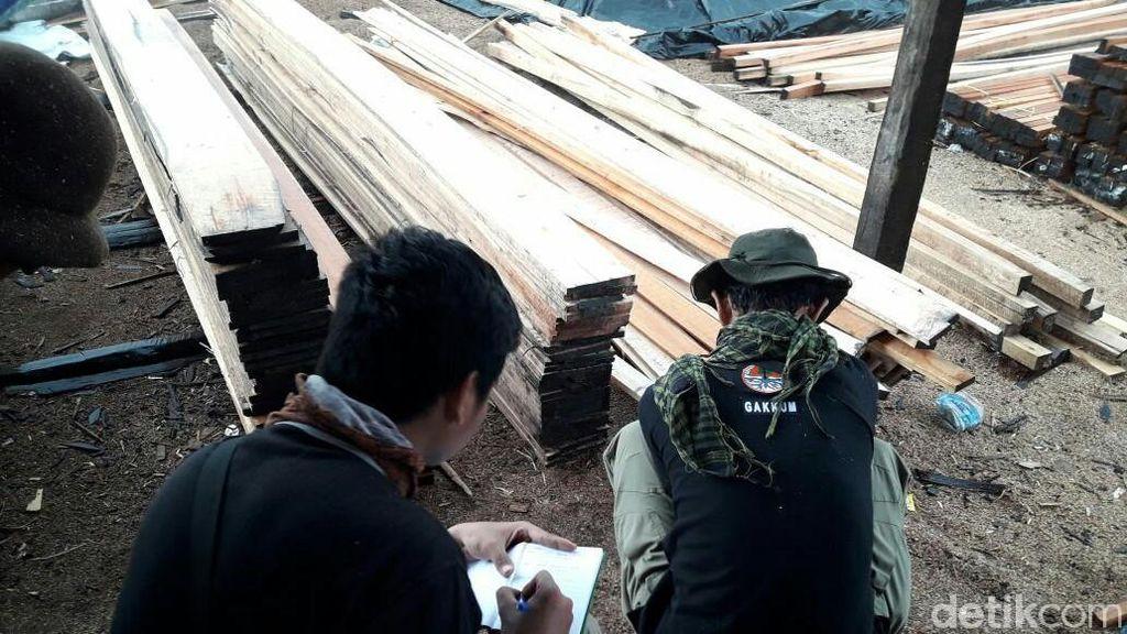 Beroperasi 1 Tahun, Pabrik Kayu Ilegal di Sumsel Dibongkar