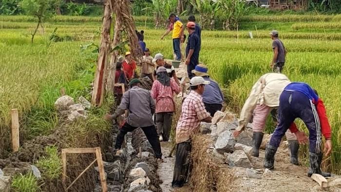Ditemani Menteri PUPR Basuki Hadimuljono, Presiden Joko Widodo (Jokowi) menunggangi motor Royal Enfield Bullet 350 cc bergaya chopper saat meninjau dua lokasi pelaksanaan Program Padat Karya Tunai (PKT) di Sukabumi, Jawa Barat.