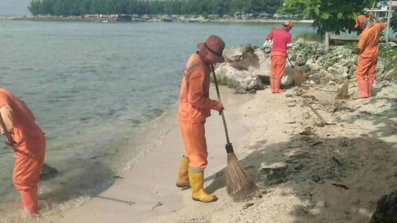 Petugas PJLP Dinas Lingkungan Hidup Kepulauan Seribu membersihkan tumpahan minyak di pantai Pulau Pari (dok Istimewa)