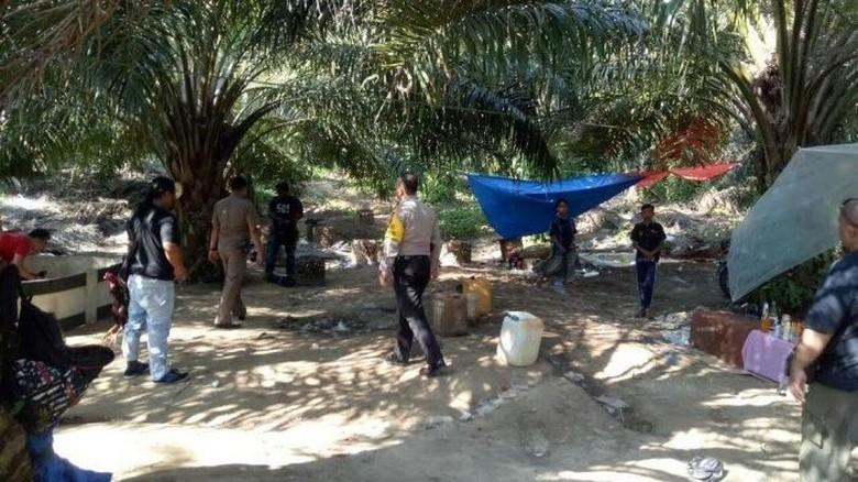 Duh! Anggota DPRD di Aceh Tertangkap Judi Sabung Ayam