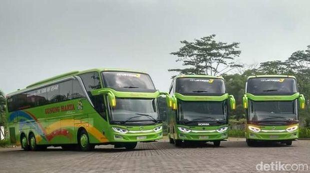 Melongok Bus Mewah Scania dan Mercedes-Benz PO Gunung Harta
