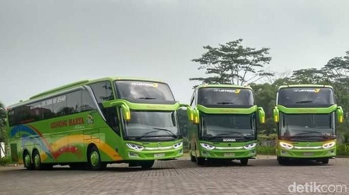 Bus Mewah Scania dan Mercedes-Benz PO Gunung Harta