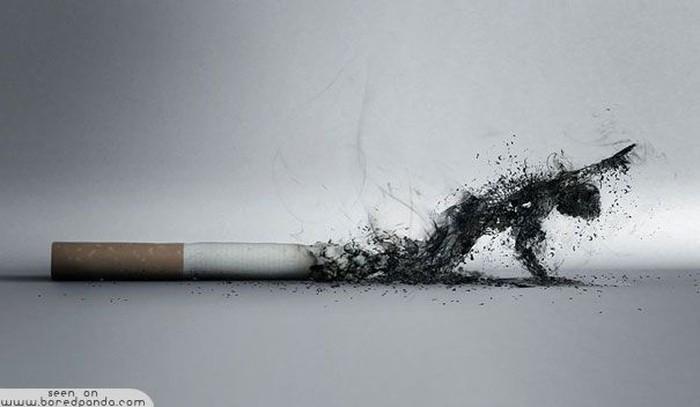 Jangan bakar dirimu sendiri menjadi abu. (Foto: boredpanda)