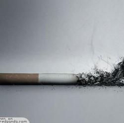 Tips Jaga Anak Menghindari Budaya Merokok