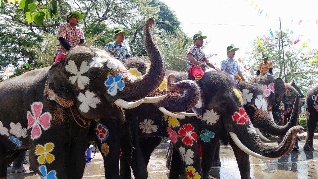 Unik! Tubuh Gajah Dilukis Warna-warni Saat Festival Air di Thailand