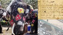 Riuh Dunia dalam Gambar: Gajah Didandani, Bangku Khusus Zuckerberg