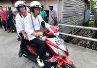 Image result for Jokowi wim