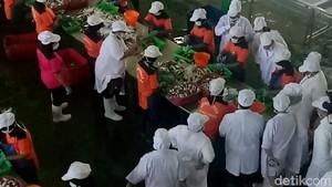 BPOM RI Kunjungi Pabrik Pengalengan Ikan, Ini Hasilnya