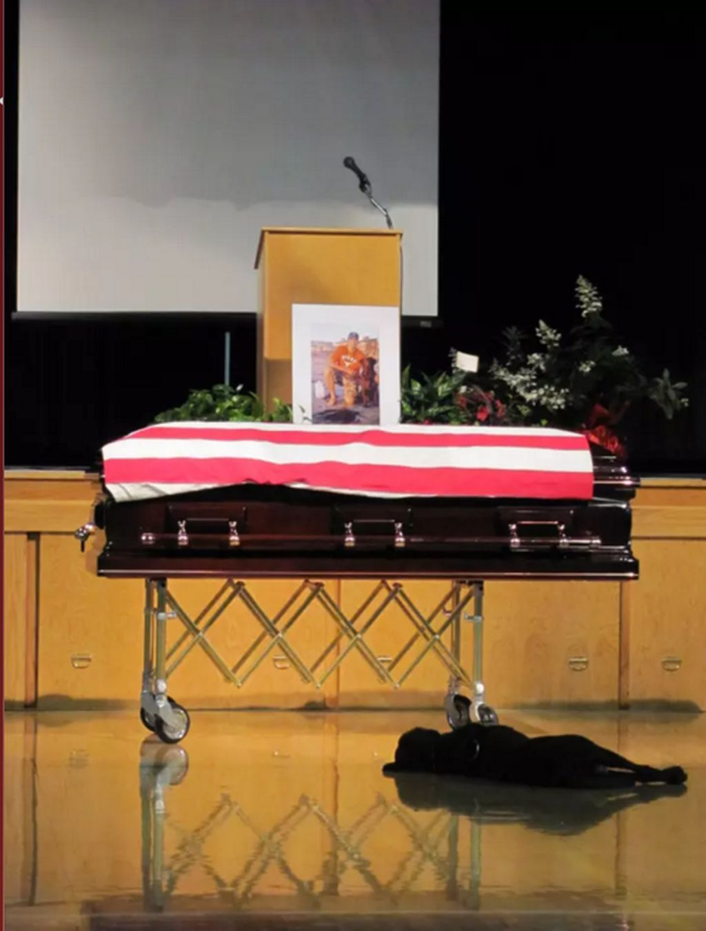 Seekor anjing yang sedang berduka di pemakaman tuannya yang merupakan anggota Navy SEAL. Foto: Buzzfeed