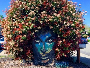 Bunga Bermekaran Hiasi Mural Penghormatan untuk Musisi Prince