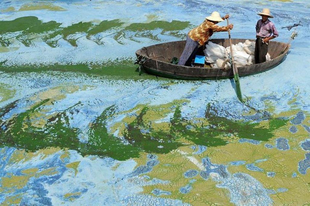 Sang nelayan seperti tengah melukis. Foto: bored panda