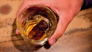 Tradisi Aneh di Kanada, Minum Cocktail Isi Jari Kaki Manusia