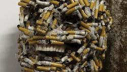 Puntung rokok yang dibuang sembarangan menjadi masalah bagi kesehatan lingkungan. Beberapa orang protes dengan cara unik yaitu mengubahnya jadi karya seni.
