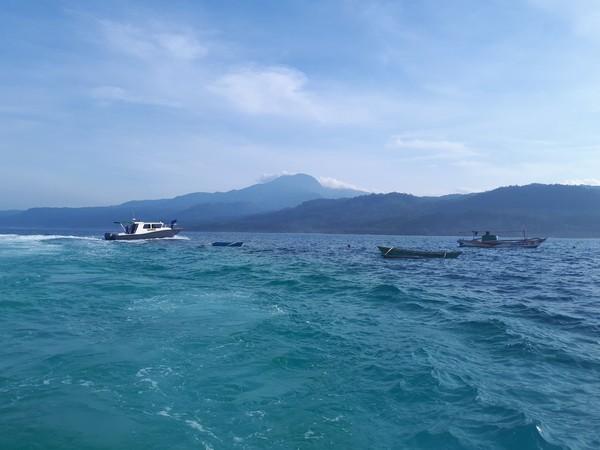 Selain memiliki laut dengan lumba-lumba, pulau ini juga memiliki pantai pasir putih yang cantik. (Mercy Raya/detikTravel)