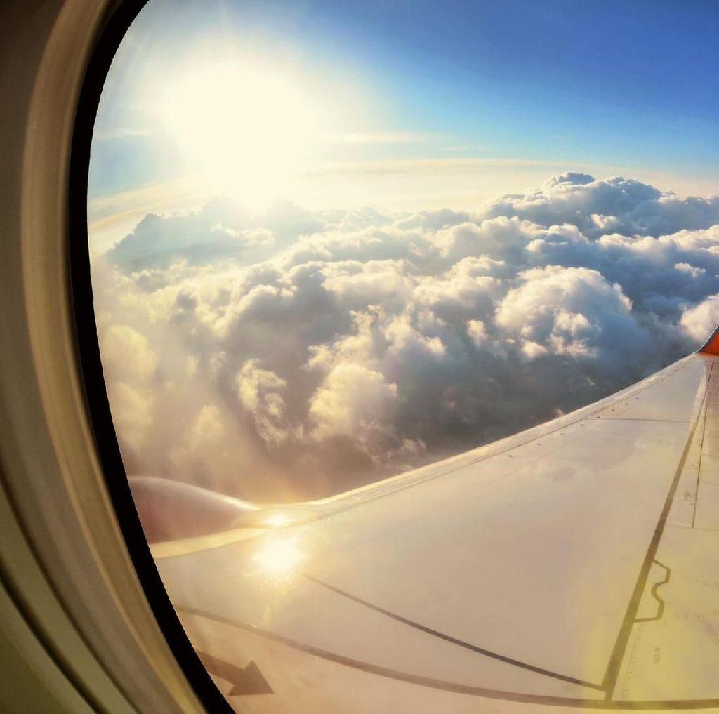 Studi: Parasut Tidak Mampu Menyelamatkan saat Kecelakaan Pesawat Terbang