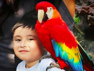 Bocah yang tahun ini genap berumur 6 tahun dan biasa dipanggil Ichal adalah buah hati Daus Mini dari pernikahannya bersama Yunita Lestari. (Foto: Instagram/ @ichalomen02)