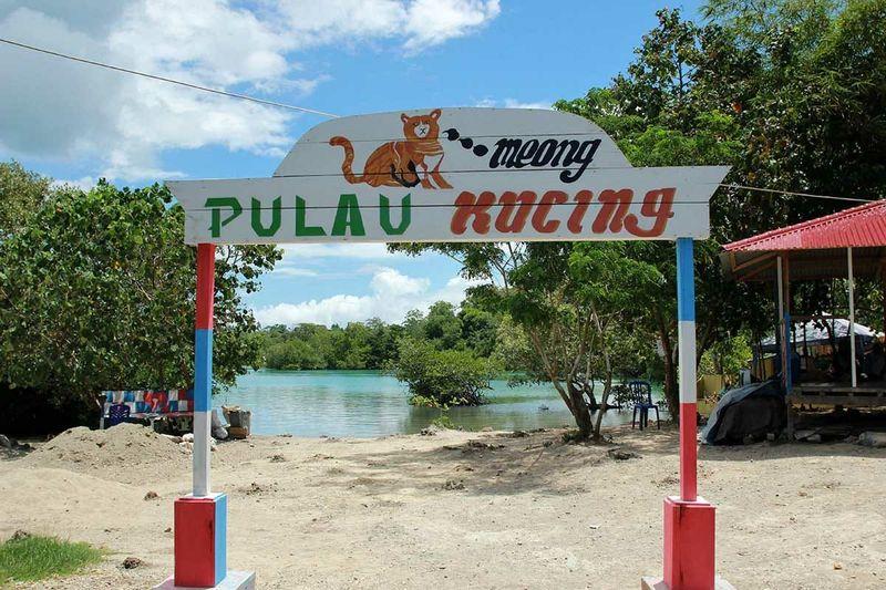 Berlokasi di Desa Fukweu, Pulau Sulabesi, Kabupaten Kepulauan Sula, traveler bisa menjumpai Pulau Kucing. Tidak usah jauh-jauh ke Pulau Aoshima di Jepang (Randy/detikTravel)