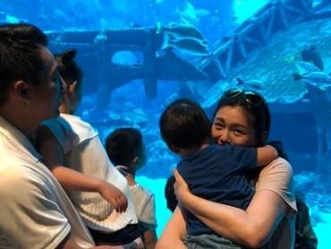 Wah, asyiknya melihat ikan di akuarium raksasa. (Foto: Weibo)