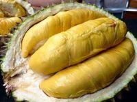 Durian Petruk yang enak dari Jepara.