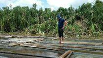 Foto: Penemuan Ribuan Kayu Illegal Logging di Sungai Musi