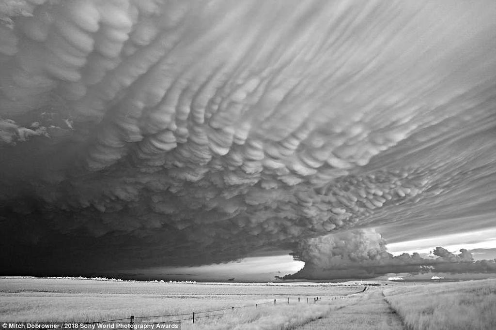 Badai di Amerika Serikat yang tertangkap kamera fotografer asal Amerika Serikat Mitch Dobrowner menjadi juara 2 di kategori landscape. Foto: Sony Photography Awards 2018