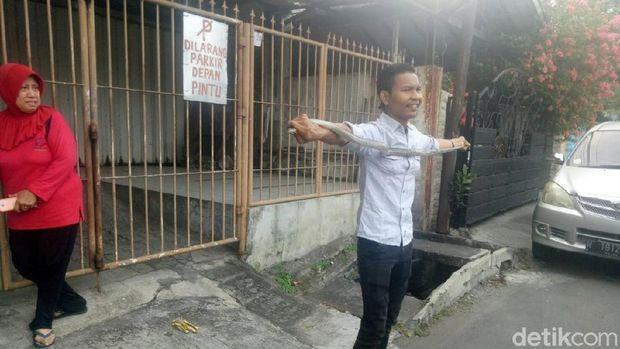 Ular Piton 1 Meter Bikin Panik Warga Tambaksari Surabaya