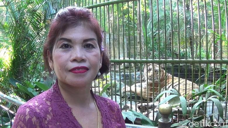 Ida Ayu Putu Diyatmini yang bekerja di Bali Zoo (Nandhang Astika/detikTravel)